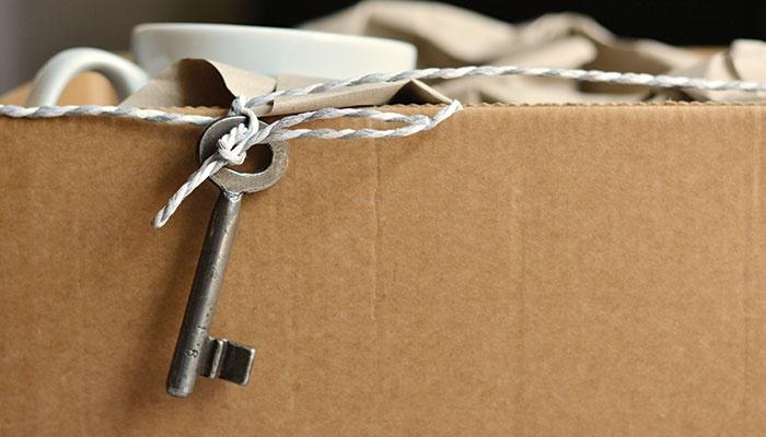 Le scatole di cartone di grandi dimensioni